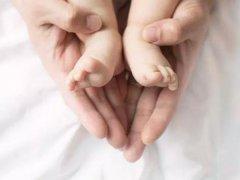 三代试管婴儿移植囊胚胎优势在哪?